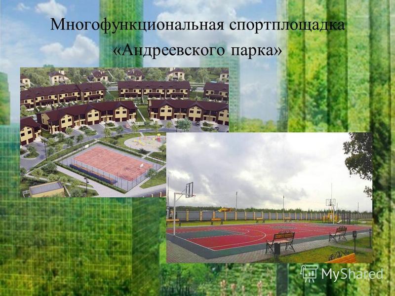 Многофункциональная спортплощадка «Андреевского парка»
