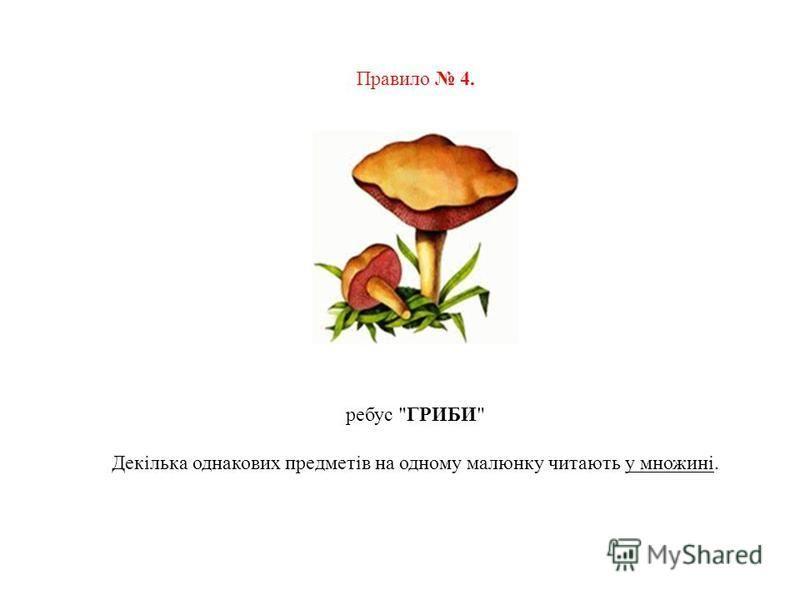 Правило 4. ребус ГРИБИ Декілька однакових предметів на одному малюнку читають у множині.