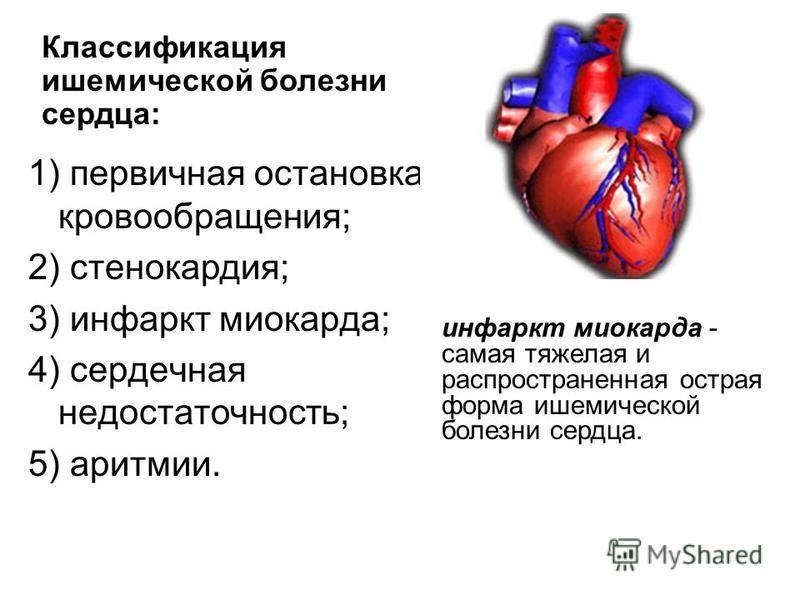 1) первичная остановка кровообращения; 2) стенокардия; 3) инфаркт миокарда; 4) сердечная недостаточность; 5) аритмии. Классификация ишемической болезни сердца: инфаркт миокарда - самая тяжелая и распространенная острая форма ишемической болезни сердц