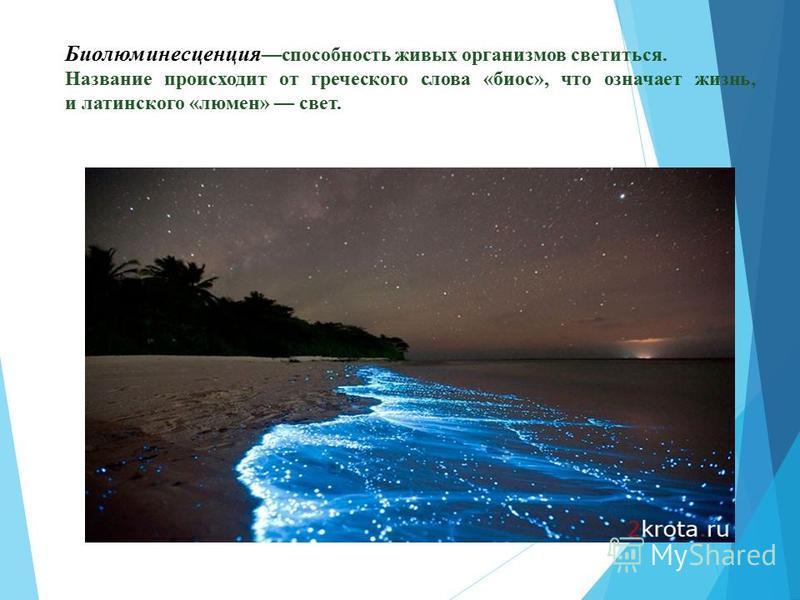 Биолюминесцунция способность живых организмов светиться. Название происходит от греческого слова «биос», что означает жизнь, и латинского «люмен» свет.