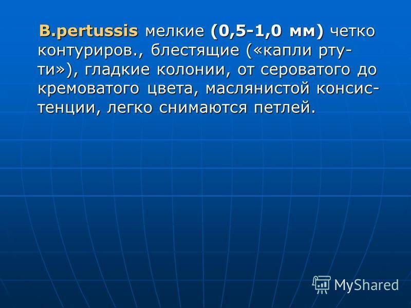 B.pertussis мелкие (0,5-1,0 мм) четко контур киров., блестящие («капли ртути»), гладкие колонии, от сероватого до кремоватого цвета, маслянистой консистенции, легко снимаются петлей. B.pertussis мелкие (0,5-1,0 мм) четко контур киров., блестящие («ка