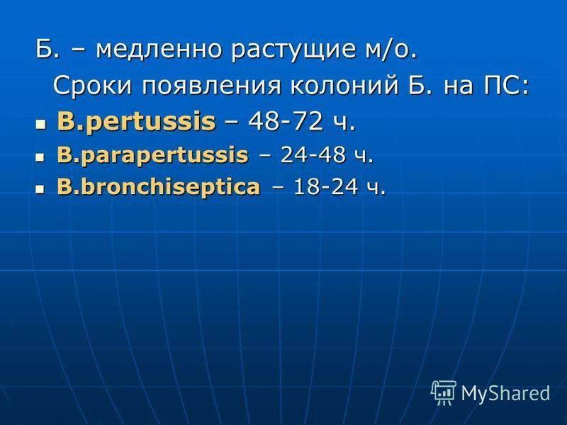 Б. – медленно растущие м/о. Сроки появления колоний Б. на ПС: Сроки появления колоний Б. на ПС: B.pertussis – 48-72 ч. B.pertussis – 48-72 ч. B.parapertussis – 24-48 ч. B.parapertussis – 24-48 ч. B.bronchiseptica – 18-24 ч. B.bronchiseptica – 18-24 ч