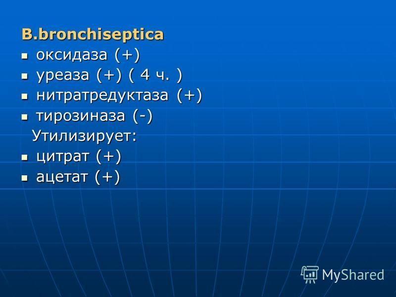 B.bronchisepticа оксидаза (+) оксидаза (+) уреаза (+) ( 4 ч. ) уреаза (+) ( 4 ч. ) нитратредуктаза (+) нитратредуктаза (+) тирозиназа (-) тирозиназа (-) Утилизирует: Утилизирует: цитрат (+) цитрат (+) ацетат (+) ацетат (+)