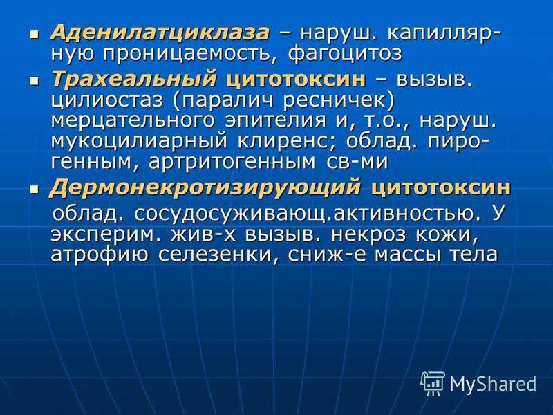 Аденилатциклаза – наруш. капилляр- ную проницаемость, фагоцитоз Аденилатциклаза – наруш. капилляр- ную проницаемость, фагоцитоз Трахеальный цитотоксин – вызыв. цилиостаз (паралич ресничек) мерцательного эпителия и, т.о., наруш. мукоцилиарный клиренс;