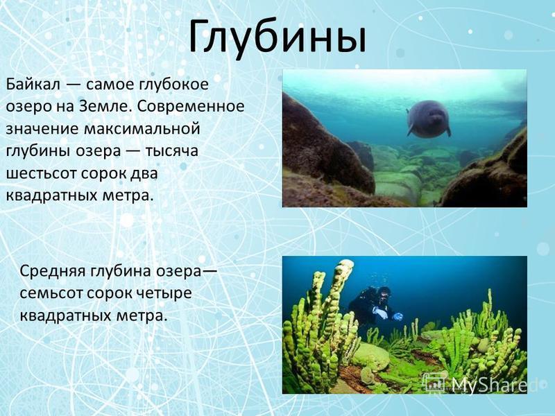 Глубины Байкал самое глубокое озеро на Земле. Современное значение максимальной глубины озера тысяча шестьсот сорок два квадратных метра. Средняя глубина озера семьсот сорок четыре квадратных метра.