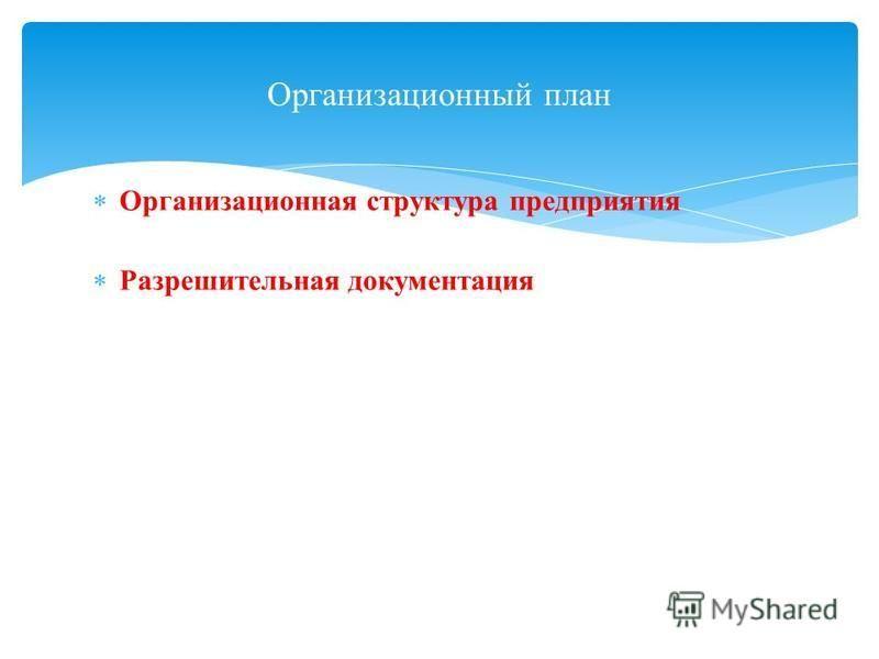 Организационная структура предприятия Разрешительная документация Организационный план