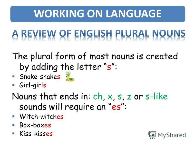 The plural form of most nouns is created by adding the letter s: Snake-snakes Girl-girls Nouns that ends in: ch, x, s, z or s-like sounds will require an es: Witch-witches Box-boxes Kiss-kisses WORKING ON LANGUAGE