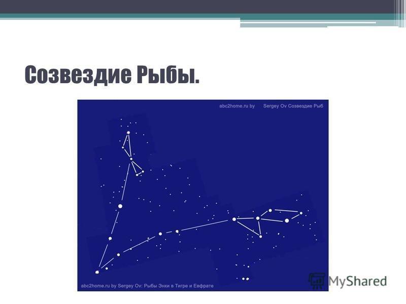 Созвездие Рыбы.