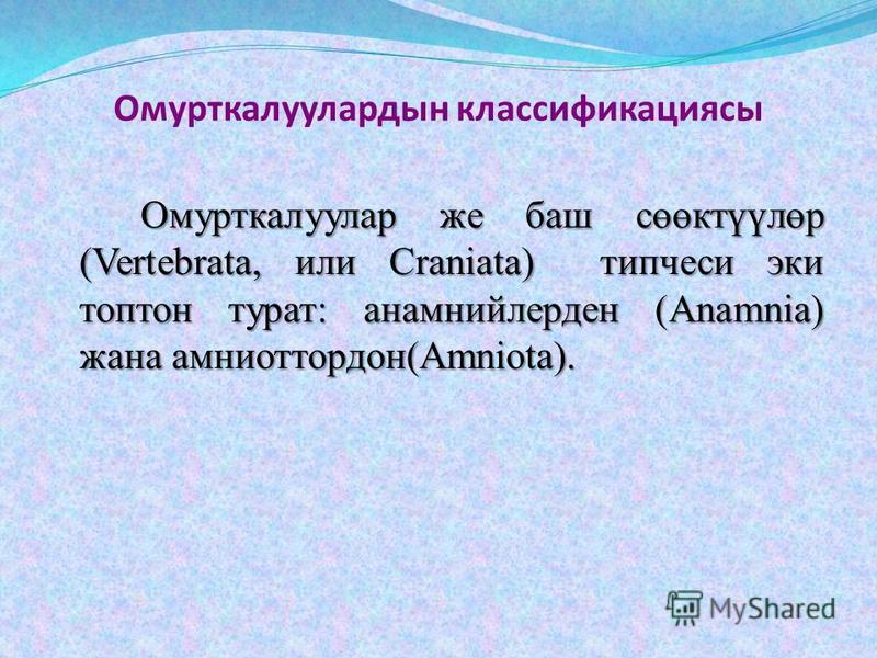 Омурткалуулардын классификациясы Омурткалуулар же баш сөөктүүлөр (Vertebrata, или Craniata) типчеси эки топтон турат: анамнийлерден (Anamnia) жана амниоттордон(Amniota).