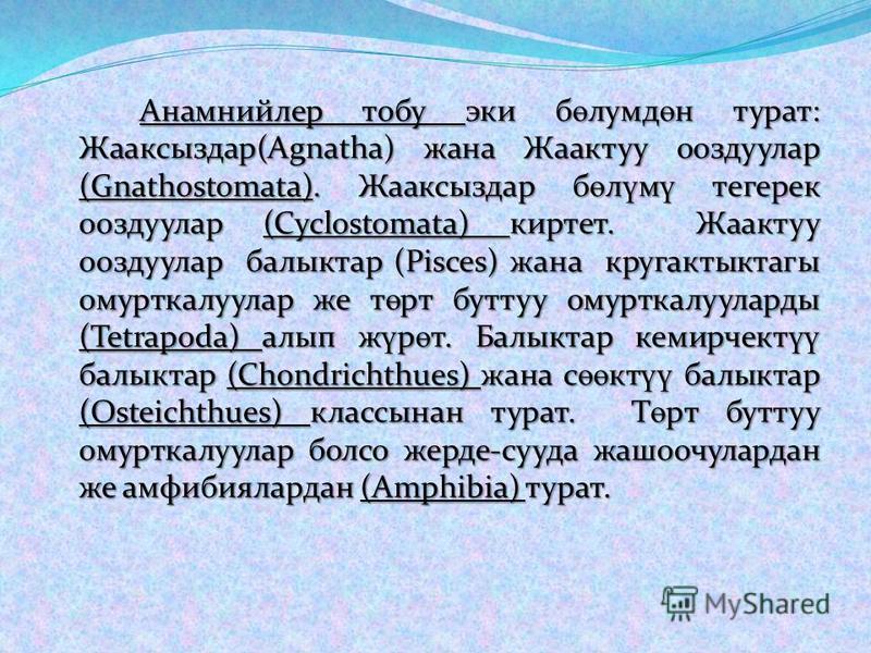 Анамнийлер тобу эки б ө лумд ө н турат: Жааксыздар(Agnatha) жана Жаактуу ооздуулар (Gnathostomata). Жааксыздар б ө л ү м ү тегерек ооздуулар (Cyclostomata) киртет. Жаактуу ооздуулар балыктар (Pisces) жана кругактыктагы омурткалуулар же т ө рт буттуу