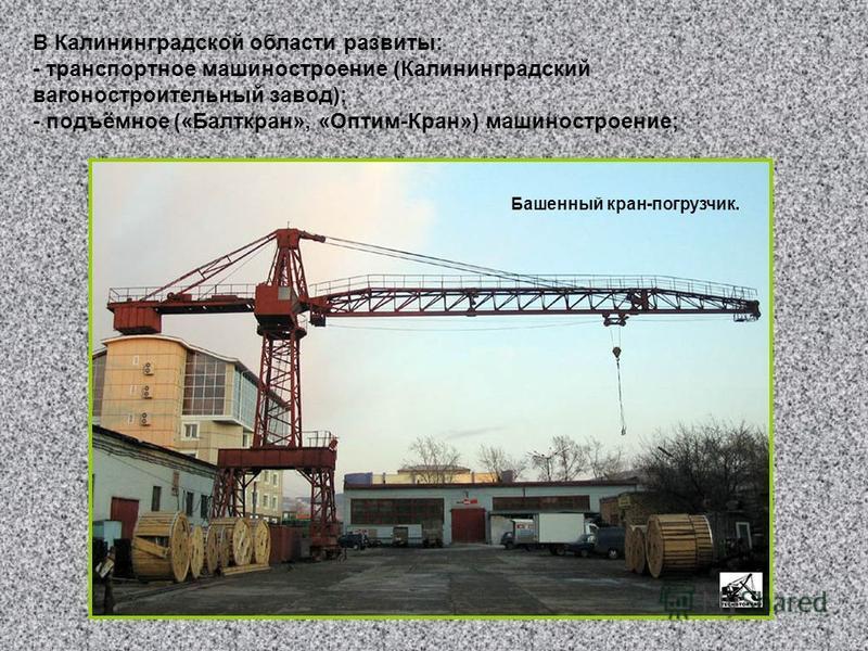 В Калининградской области развиты: - транспортное машиностроение (Калининградский вагоностроительный завод); - подъёмное («Балткран», «Оптим-Кран») машиностроение; Башенный кран-погрузчик.