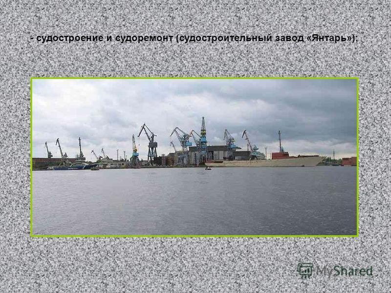 - судостроение и судоремонт (судостроительный завод «Янтарь»);