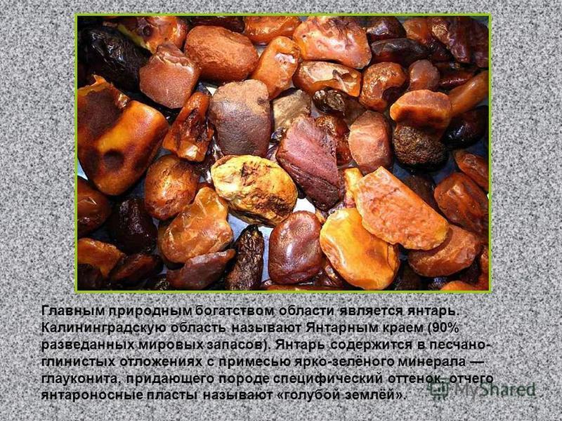 Главным природным богатством области является янтарь. Калининградскую область называют Янтарным краем (90% разведанных мировых запасов). Янтарь содержится в песчано- глинистых отложениях с примесью ярко-зелёного минерала глауконита, придающего породе