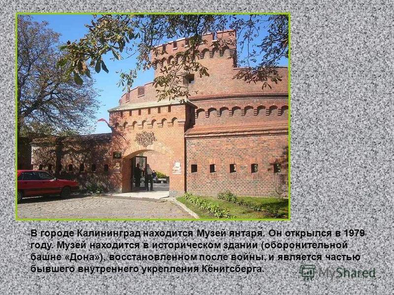 В городе Калининград находится Музей янтаря́. Он открылся в 1979 году. Музей находится в историческом здании (оборонительной башне «Дона»), восстановленном после войны, и является частью бывшего внутреннего укрепления Кёнигсберга.