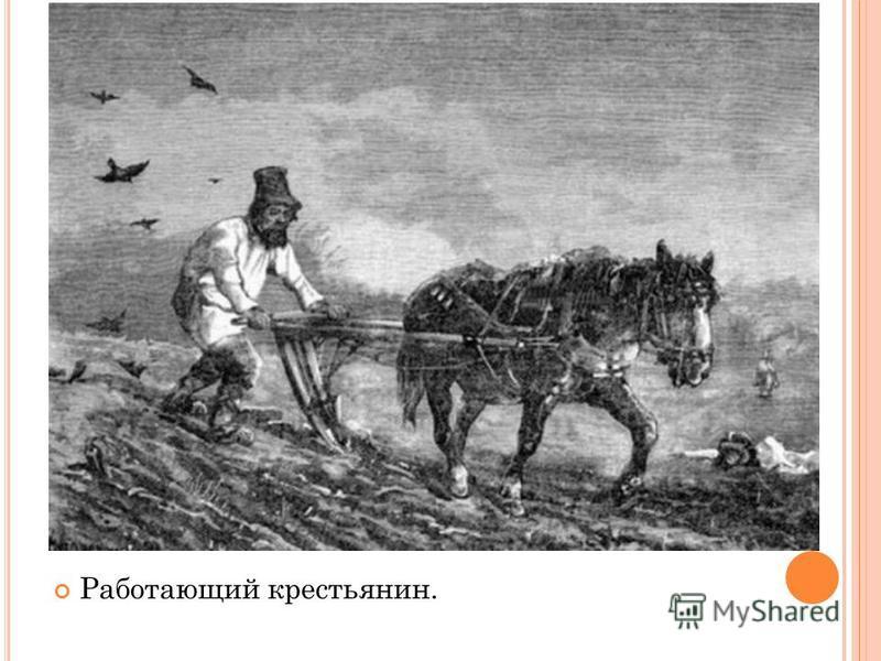 Работающий крестьянин.