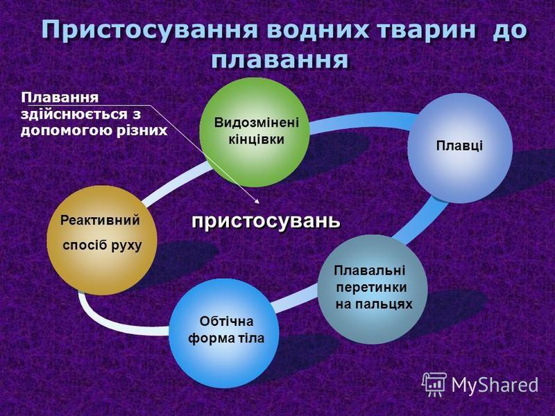 Пристосування до руху у безхребетних Дощовий червякКальмар Реактивний спосіб Щетинки Пропускають ч\з кишечник грунт