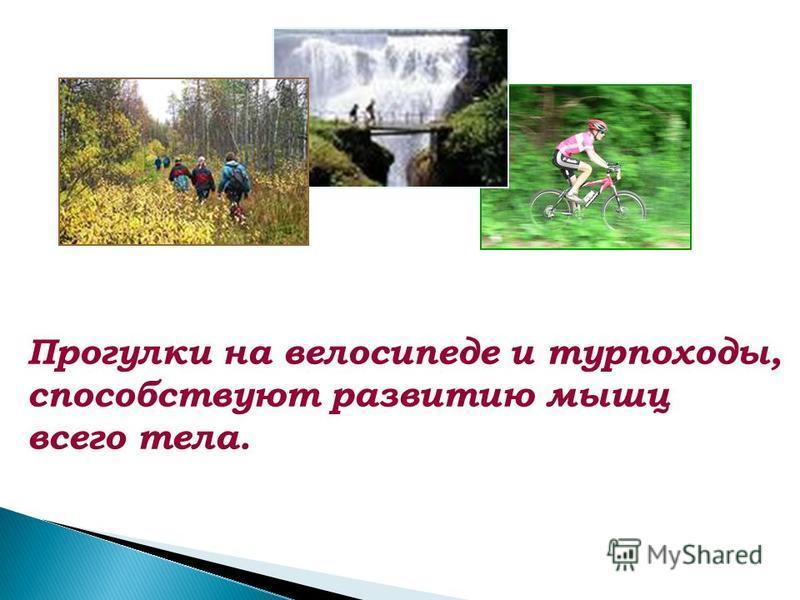 Прогулки на велосипеде и турпоходы, способствуют развитию мышц всего тела.
