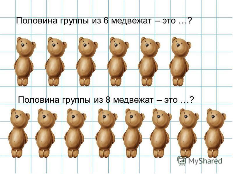 Половина группы из 6 медвежат – это …? Половина группы из 8 медвежат – это …?