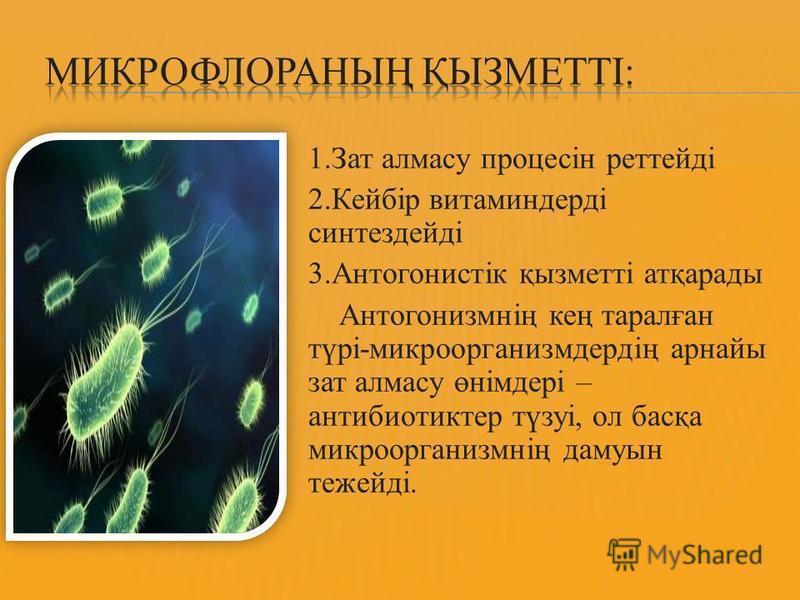 1. Зат алмасу процесін реттейді 2.Кейбір витаминдерді синтездейді 3.Антогонистік қызметті атқарады Антогонизмнің кең таралған түрі-микроорганизмдердің арнайы зат алмасу өнімдері – антибиотиктер түзуі, ол басқа микроорганизмнің дамуын тежейді.