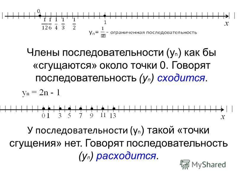 Члены последовательности (у n ) как бы «сгущаются» около точки 0. Говорят последовательность (у n ) сходится. У последовательности (у n ) такой «точки сгущения» нет. Говорят последовательность (у n ) расходится.