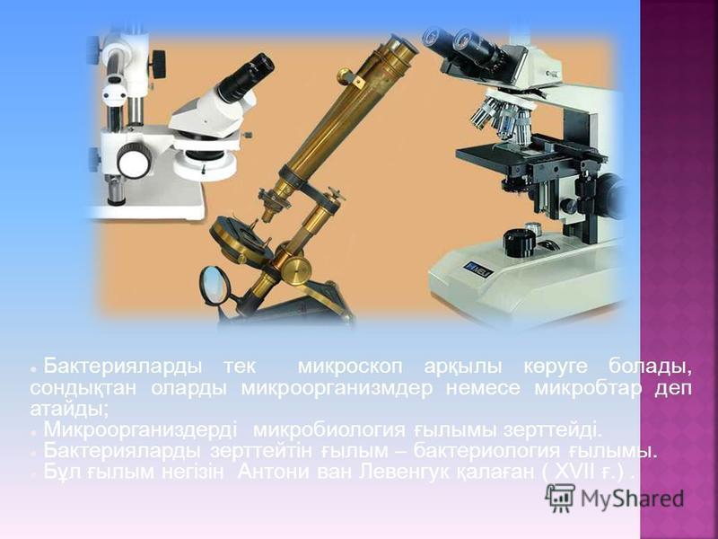 Бактерияларды тек микроскоп арқылы көруге болады, сондықтан оларды микроорганизмдер немесе микробтар деп атайды; Микроорганиздерді микробиология ғылымы зерттейді. Бактерияларды зерттейтін ғылым – бактериология ғылымы. Бұл ғылым негізін Антони ван Лев