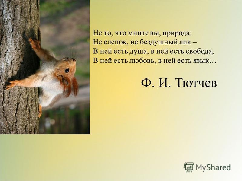 Не то, что мните вы, природа: Не слепок, не бездушный лик – В ней есть душа, в ней есть свобода, В ней есть любовь, в ней есть язык… Ф. И. Тютчев