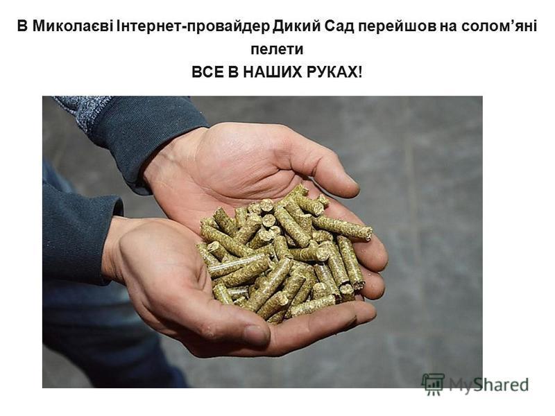 В Миколаєві Інтернет-провайдер Дикий Сад перейшов на соломяні пелети ВСЕ В НАШИХ РУКАХ!