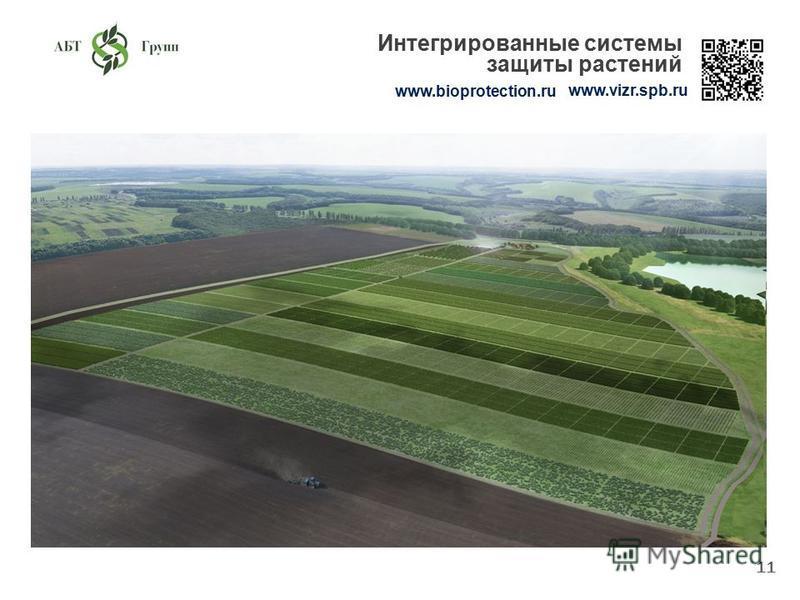 11 www.bioprotection.ru www.vizr.spb.ru Интегрированные системы защиты растений