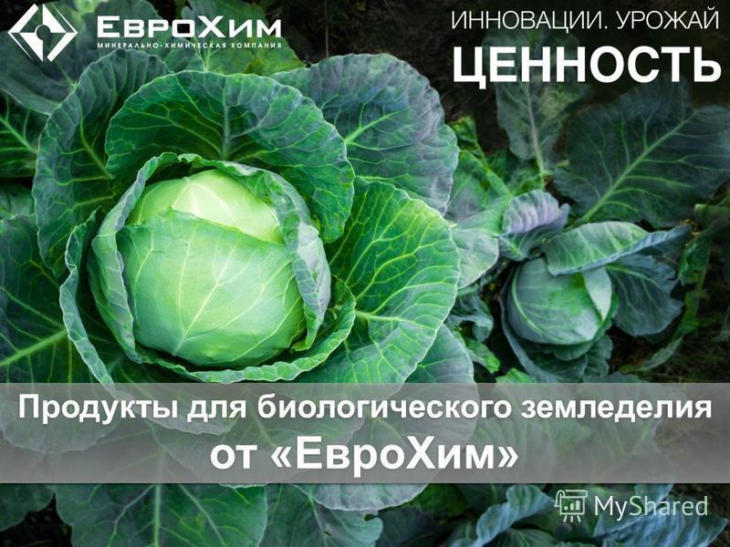 Продукты для биологического земледелия от «Евро Хим»