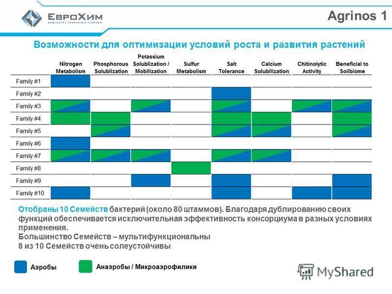 Agrinos 1 Возможности для оптимизации условий роста и развития растений Отобраны 10 Семейств бактерий (около 80 штаммов). Благодаря дублированию своих функций обеспечивается исключительная эффективность консорциума в разных условиях применения. Больш