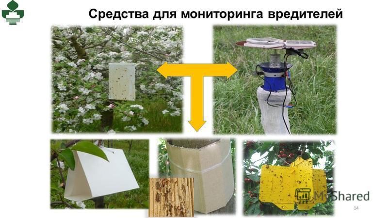 Средства для мониторинга вредителей Светоловушка с солнечными панелями 14