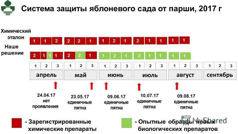 Система защиты яблоневого сада от парши, 2017 г апрель май июнь июль август сентябрь 1 2 3 Химический эталон Наше решение 1 2 3 1 2 3 1 2 3 1 2 3 1 2 3 1 1 2 1 2 2 1 2 1 2 1 1 1 1 1 2 1 2 1 1 2 1 2 1 2 1 1 1 1 24.04.17 нет проявления 23.05.17 единичн