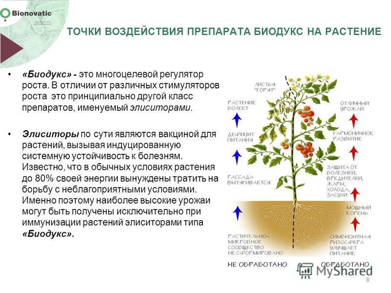 «Биодукс» - это многоцелевой регулятор роста. В отличии от различных стимуляторов роста это принципиально другой класс препаратов, именуемый элиситорами. Элиситоры по сути являются вакциной для растений, вызывая индуцированную системную устойчивость