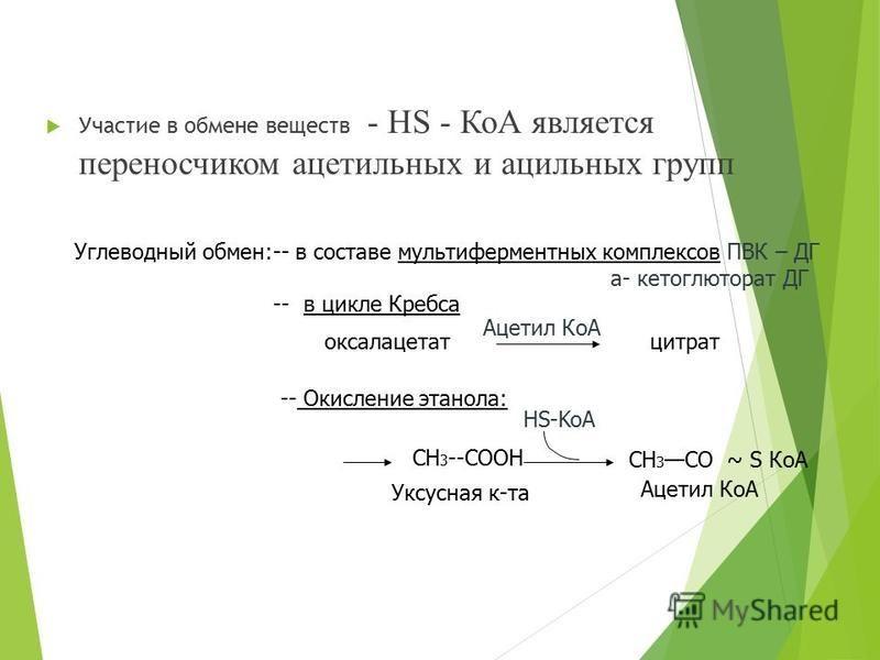 Участие в обмене веществ - НS - КоА является переносчиком ацетильных и ацильных групп Углеводный обмен:-- в составе мульти ферментных комплексов ПВК – ДГ а- кетоглюторат ДГ -- в цикле Кребса оксалацетатцитрат Ацетил КоА -- Окисление этанола: HS-KoA С