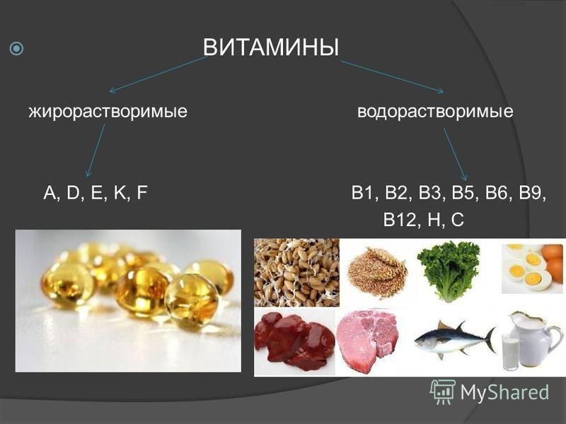 ВИТАМИНЫ жирорастворимые водорастворимые A, D, E, K, F B1, B2, B3, B5, B6, B9, B12, H, C