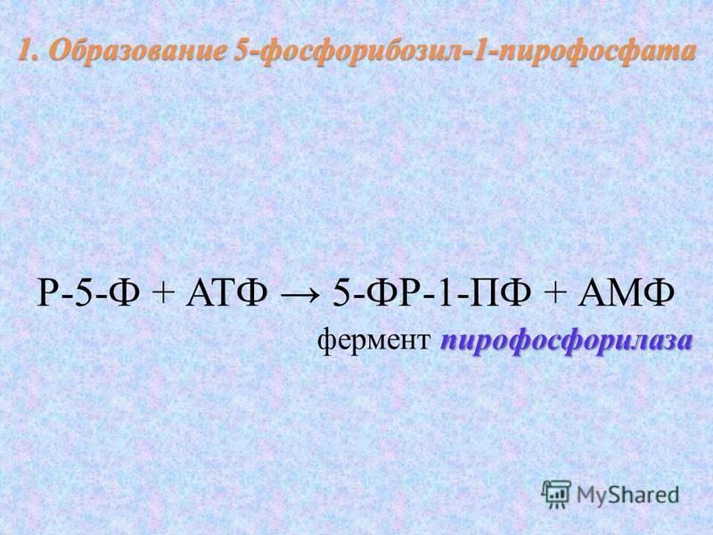Р-5-Ф + АТФ 5-ФР-1-ПФ + АМФ пирофосфорилаза фермент пирофосфорилаза 1. Образование 5-фосфорибозил-1-пирофосфата