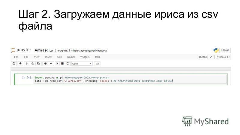 Шаг 2. Загружаем данные ириса из csv файла