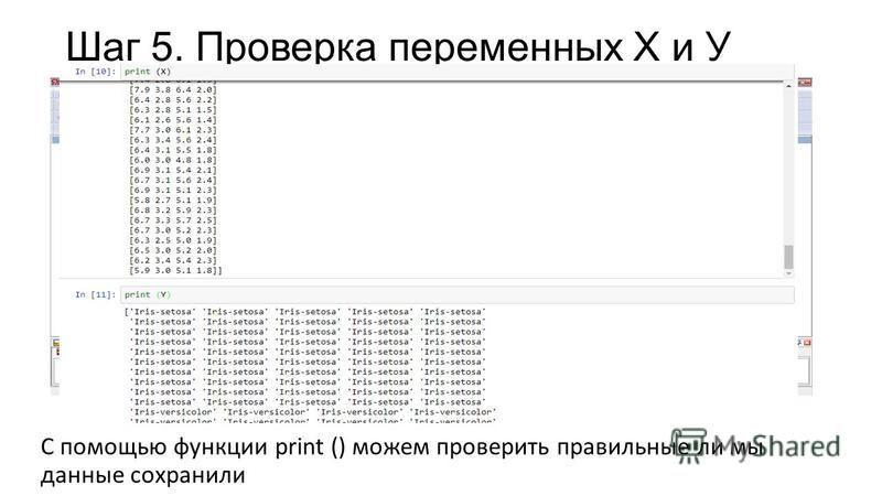 Шаг 5. Проверка переменных Х и У С помощью функции print () можем проверить правильные ли мы данные сохранили