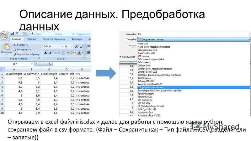 Описание данных. Предобработка данных Открываем в excel файл iris.xlsx и далее для работы с помощью языка python, сохраняем файл в csv формате. (Файл – Сохранить как – Тип файла – CSV(разделители – запятые))