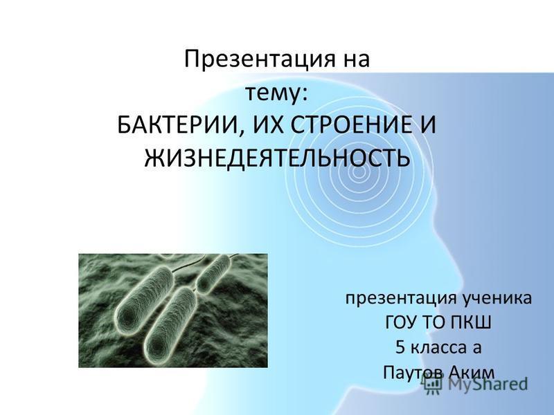 презентация ученика ГОУ ТО ПКШ 5 класса а Паутов Аким