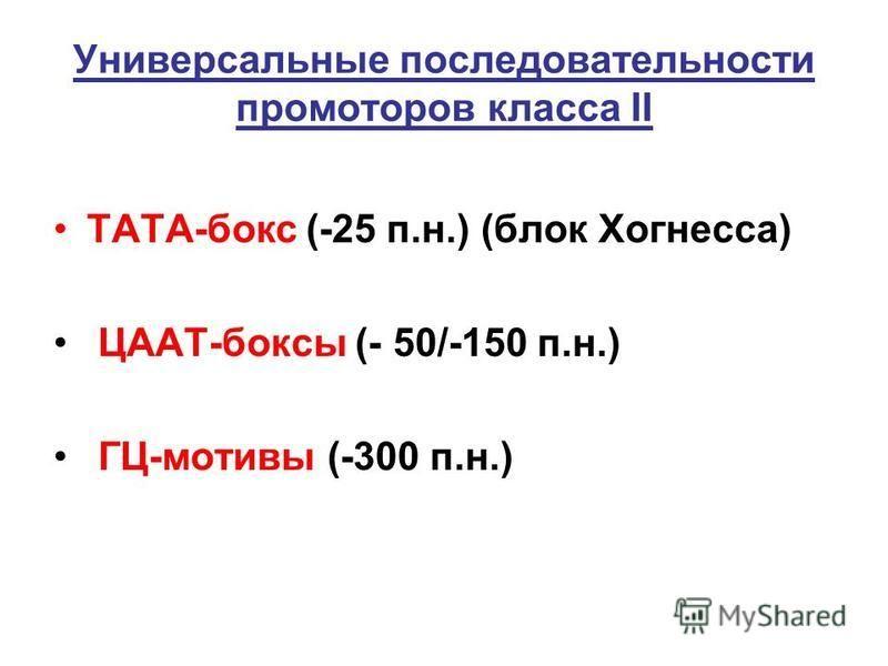 Универсальные последовательности промоторов класса II ТАТА-бокс (-25 п.н.) (блок Хогнесса) ЦААТ-боксы (- 50/-150 п.н.) ГЦ-мотивы (-300 п.н.)
