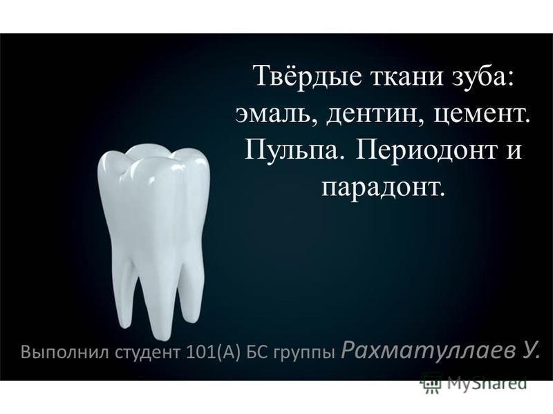 Твёрдые ткани зуба: эмаль, дентин, цемент. Пульпа. Периодонт и пародонт. Выполнил студент 101(А) БС группы Рахматуллаев У.