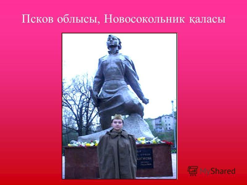 Псков облысы, Новосокольник қаласы