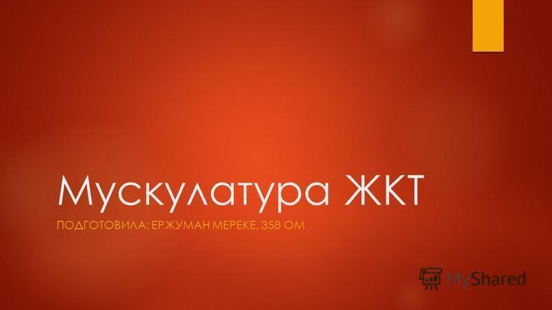 Мускулатура ЖКТ ПОДГОТОВИЛА: ЕРЖУМАН МЕРЕКЕ, 358 ОМ