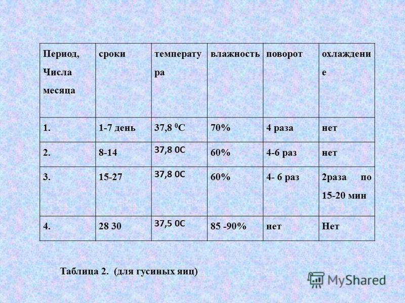 Период, Числа месяца сроки температура влажность поворот охлаждение 1.1-7 день 37,8 0 С70%4 раза нет 2.8-14 37,8 0С 60%4-6 раз нет 3.15-27 37,8 0С 60%4- 6 раз 2 раза по 15-20 мин 4.28 30 37,5 0С 85 -90%нет Нет Таблица 2. (для гусиных яиц)