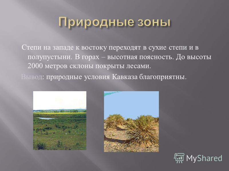 Степи на западе к востоку переходят в сухие степи и в полупустыни. В горах – высотная поясность. До высоты 2000 метров склоны покрыты лесами. Вывод : природные условия Кавказа благоприятны.