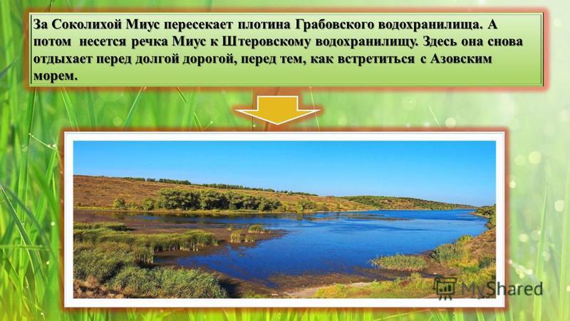 За Соколихой Миус пересекает плотина Грабовского водохранилища. А потом несется речка Миус к Штеровскому водохранилищу. Здесь она снова отдыхает перед долгой дорогой, перед тем, как встретиться с Азовским морем.