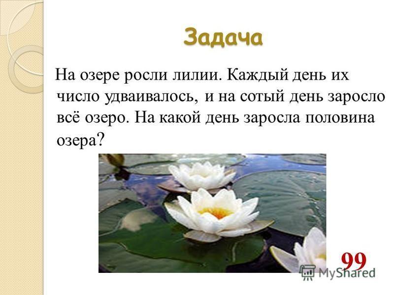 Задача На озере росли лилии. Каждый день их число удваивалось, и на сотый день заросло всё озеро. На какой день заросла половина озера ? 99
