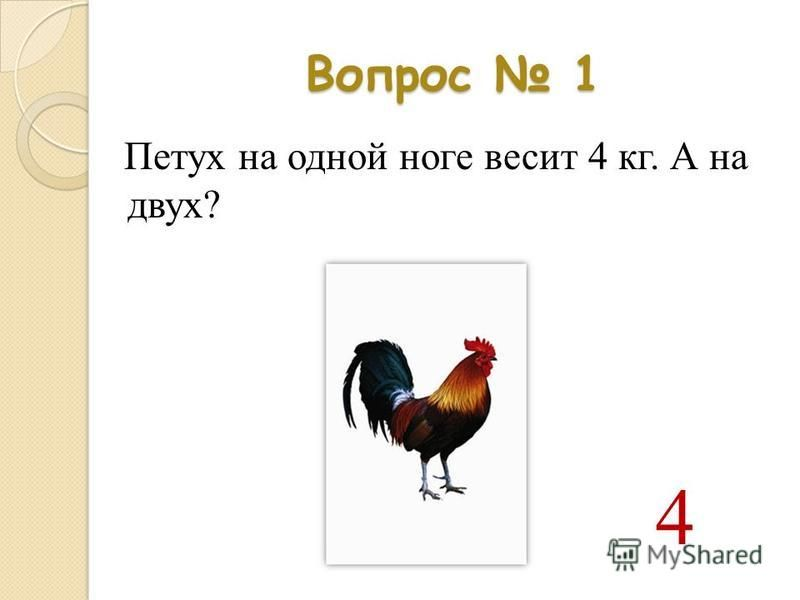 Вопрос 1 Петух на одной ноге весит 4 кг. А на двух? 4