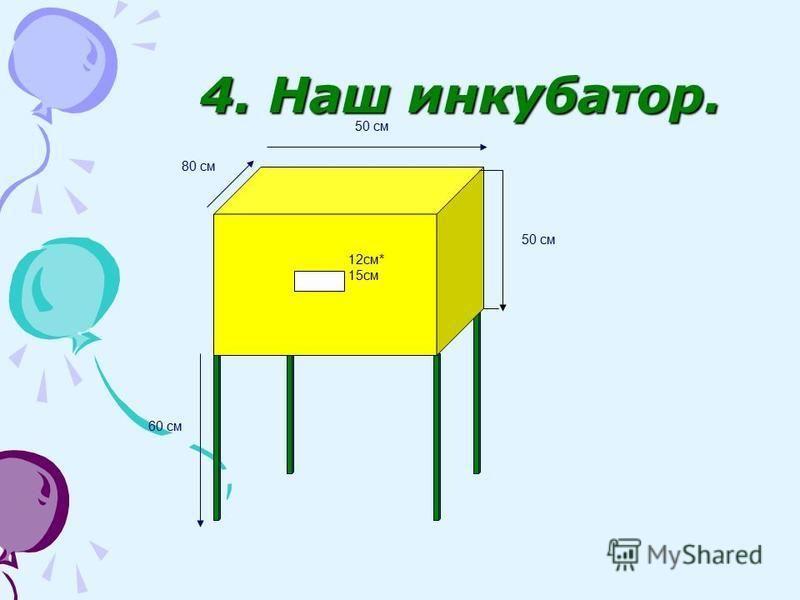 4. Наш инкубатор. 60 см 50 см 80 см 12 см* 15 см